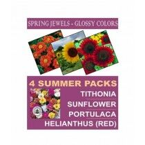 DIY Store Summer Flower Seeds Pack of 4 (0044)
