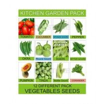 DIY Store Vegetables Gardening Seeds Pack of 12